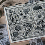 LCN Rubber Stamp Set - Fungus Notecard II