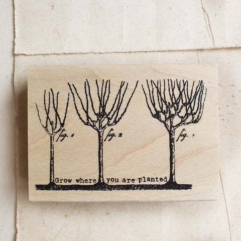 CatslifePress Rubber Stamp - Grow where you are planted