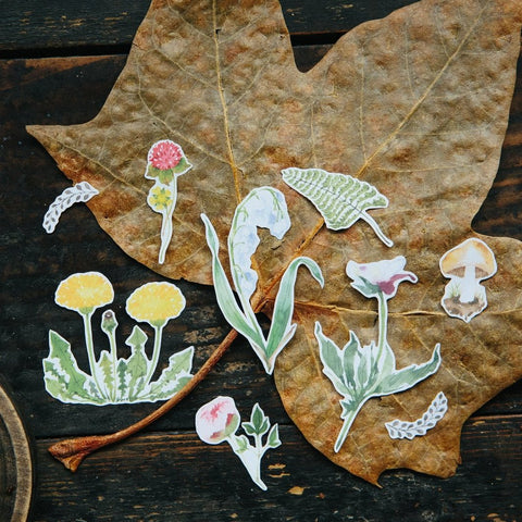 OURS Botanical DIY Stickers