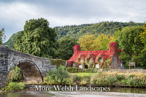 More Welsh Landscapes Gallery - Images from the coast to the countryside of North Wales including Betws y Coed, Llandudno, Colwyn Bay, Conwy and other popular locations.
