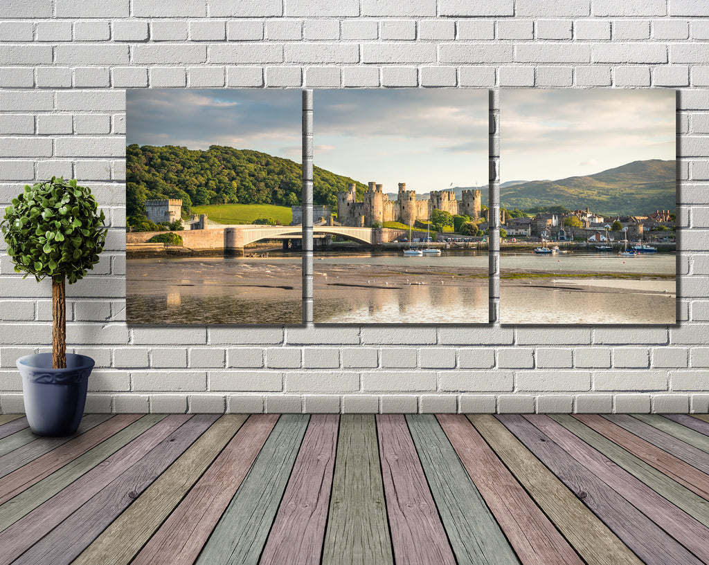 Smart Imaging & Framing - Canvas Wrap Triptych Sample Wall Mounted Image