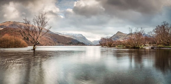 Llyn Padarn & The Lone Tree - Panorama