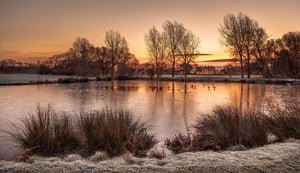 Winter Sunrise at Abergele Pond - Panorama