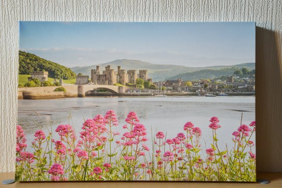 Conwy Castle, Bridge and Harbour on a sunny, blue sky day. Vibrant pink flowers fill the foreground. Smart Imaging & Framing North Wales