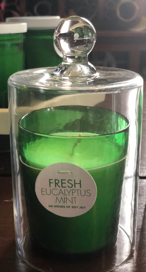 Eucalyptus Mint Soy Wax Candle
