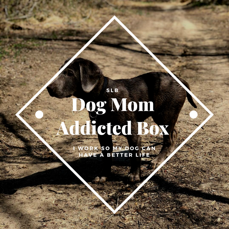 SLB Dog Mom Addicted Box 📦
