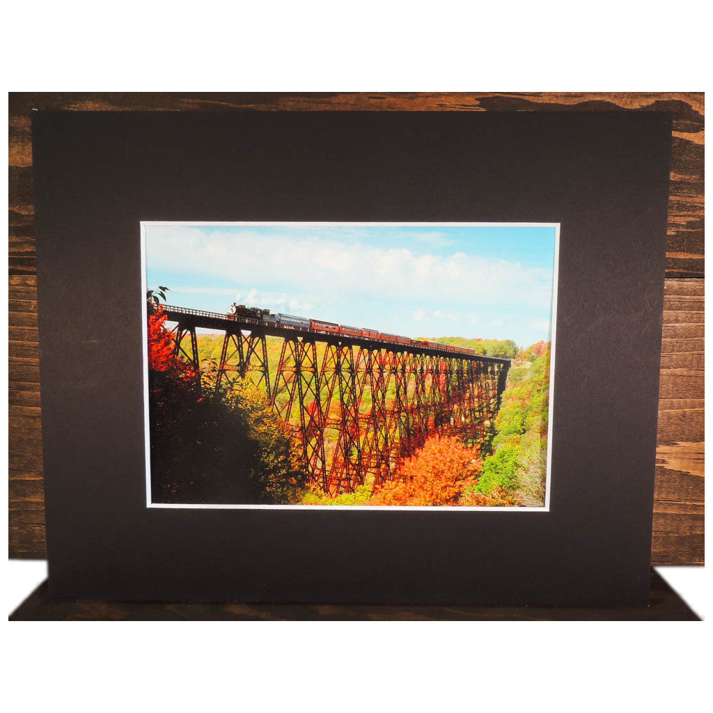 Eagle Eye Photographic Prints