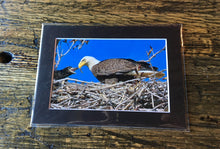 Load image into Gallery viewer, Eagle Eye Photography 4x6 Nature Prints