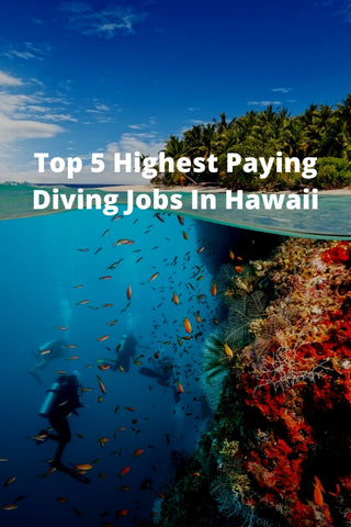 Top 5 Highest Paying Diving Jobs In Hawaii
