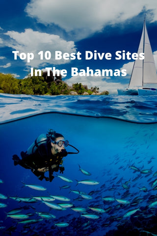 Top 10 Best Dive Sites In The Bahamas
