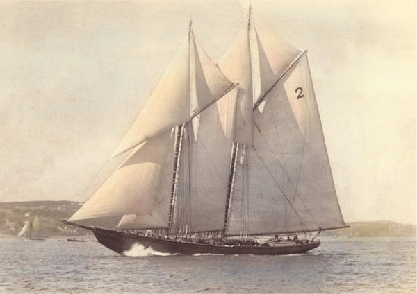A Dime for Your Thoughts:  What is the Bluenose and Why We Love It