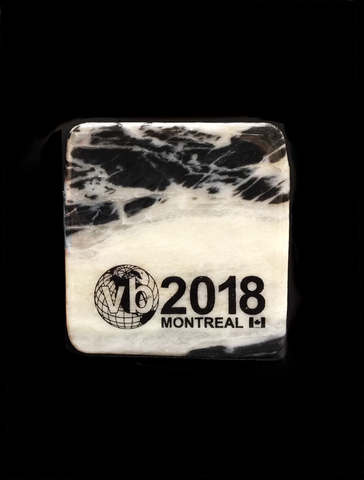 Canadian Shield Stone Custom Coaster