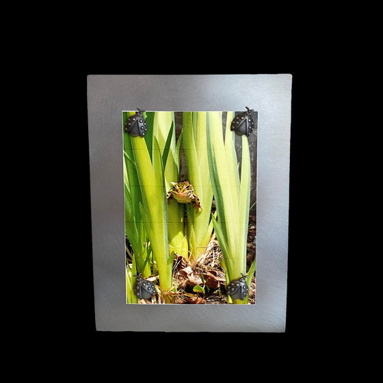 A vertical rectangular metal picture frame with four lady bug shaped pewter magnets that hold a picture of a small frog in some grass.