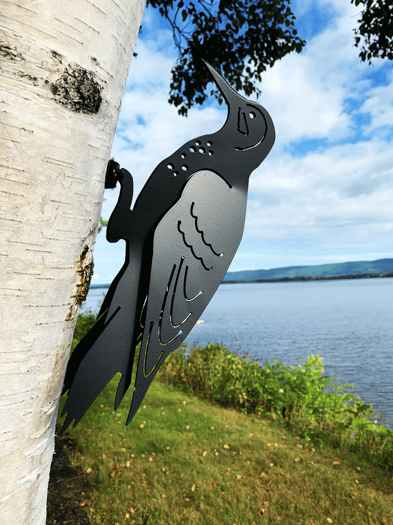 This metal sculpture shows the matte black silhouette of a flicker mounted on a birch tree by a river. Delicately punched metal provides the details of the face, wings and chest. The wings are bent slightly away from the body, rendering the bird three dimensional. The flicker is mounted to the tree by its feet by means of a nail or screw.