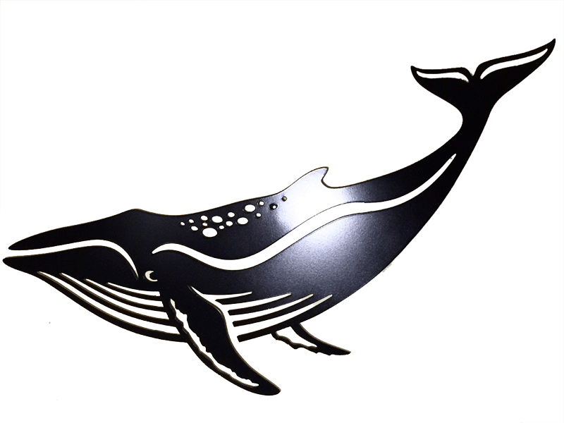 This metal sculpture shows the matte black silhouette of a humpbacked whale. Metal has been punched out of this piece to create the stripes of the belly and the characteristic bumps on the back and fins. Perspective creates the illusion that the what is looking back at the viewer as it swims away to the left.