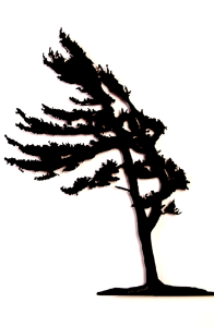This metal sculpture shows the matte black silhouette of a pine tree being blown in the wind. It leans slightly to the left, branches flowing elegantly. Its straight trunk and fully foliage give an impression of hardiness and strength despite the strong wind.