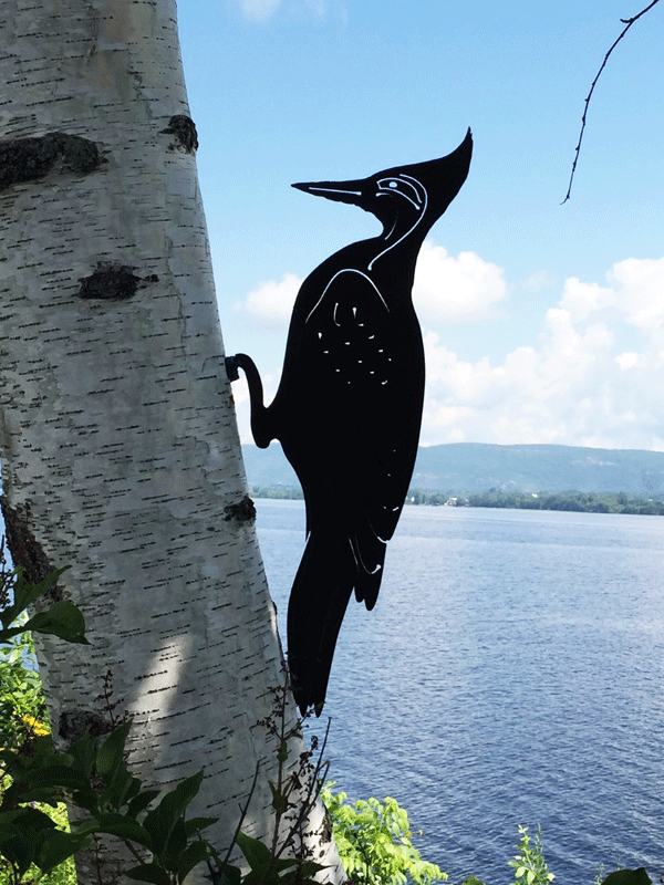 This metal sculpture shows the matte black silhouette of a woodpecker mounted on a birch tree by a river. Delicately punched metal provides detail to the face and wings. The bird has a tall head crest similar to a pileated woodpecker. The woodpecker is mounted to the tree by its feet by means of a nail or screw.