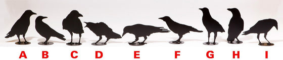 Nine different designs of crow sculptures. Each metal art sculpture features the silhouette of a crow painted matte black, with a small circular base. The delicate outline of the silhouette gives the impression of real feathers.