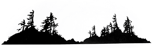 This metal sculpture shows the matte black silhouette of two rugged islands connected by a small land bridge.  Weathered trees emerge from the dense shrubbery of the islands. The trees have broken branches and their rough leaves grow to one side, suggesting they live in a harsh, windy place. The highly detailed edges give this piece a strong sense of realism.