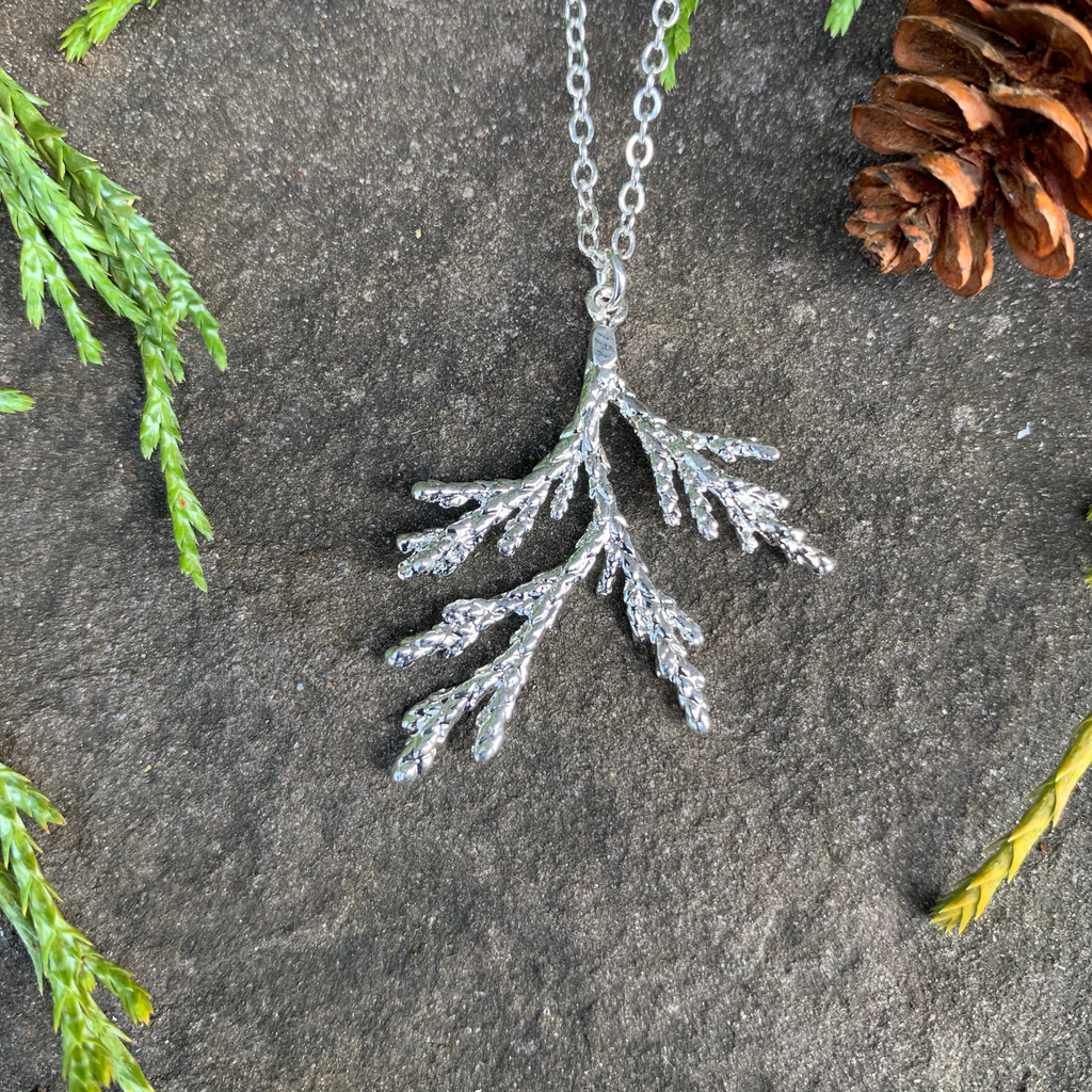 A small silver coated piece of juniper on a silver chain sits on a stone background. The silver has a bright finish. Around the picture are decorative evergreen leaves and a pine cone.