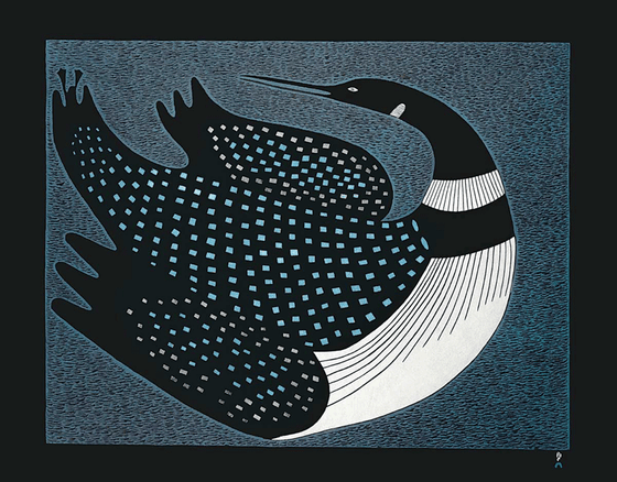 A large common loon looking over its shoulder.  Its black head, neck and beak are very slender. It has a white chest and collar. The spots on its black back are light blue and grey. The background is a faded blue with densely packed black hatch marks. This makes the background look dark and rough textured. This Canadian Indigenous print was created by Inuit artist Ningeokuluk Teevee, who was born in Cape Dorset, Nunavut.
