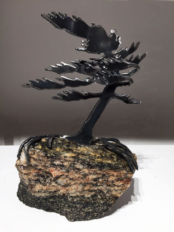 Windswept Pine Sculpture - Small