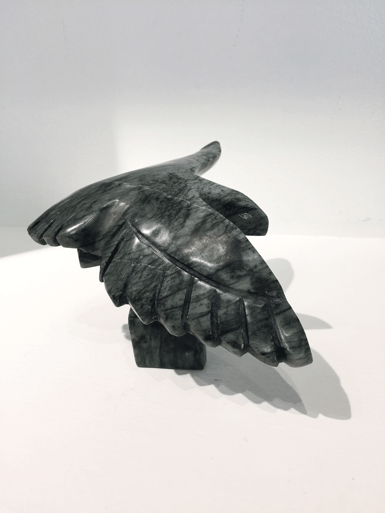 A soapstone carving of a bird in flight by Pitseola Pootoogook. This piece is made of dark black stone with marbled grey patterning throughout. In this photograph, a side view of the bird is shown.