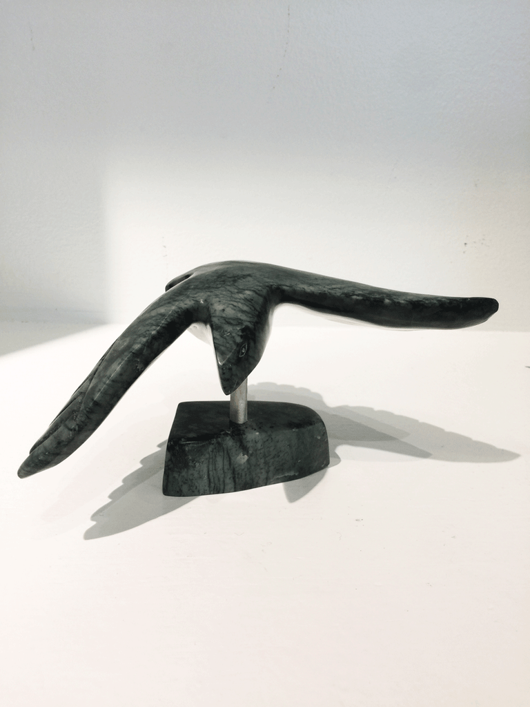 A soapstone carving of a bird in flight by Pitseola Pootoogook. This piece is made of dark black stone with marbled grey patterning throughout. In this photograph, a front view of the bird is shown.