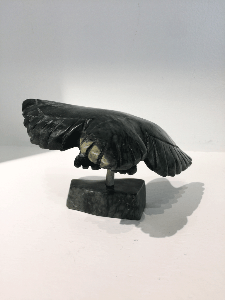A soapstone carving of a bird in flight by Pitseola Pootoogook. This piece is made of dark black stone with marbled grey patterning throughout. In this photograph, a back view of the bird is shown.