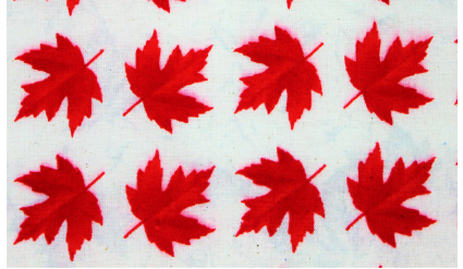 White canadian made face mask featuring red maple leaves