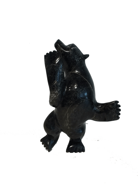 A soapstone carving of a dancing bear by Moe Pootoogook. The bear is standing on it's hind legs, which gives the illusion that the bear is indeed dancing. This piece is made from a dark black stone with yellow marbled patterning throughout. In this photograph, a front view of the bear is shown.