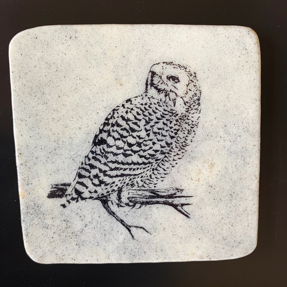 This coaster features the image of the rear side view of a snowy owl as it sits on a branch looking backwards. The image is on a piece of canadian shield marble with mineral lines running through in unique colours, lines, and patterns. The coaster is finished with a clear coat, giving it a shiny finish.