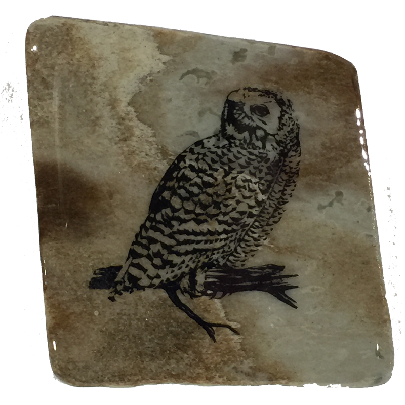 A second image of a snowy owl coaster
