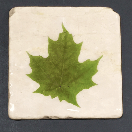 White Marble with Green Maple Leaf Coaster