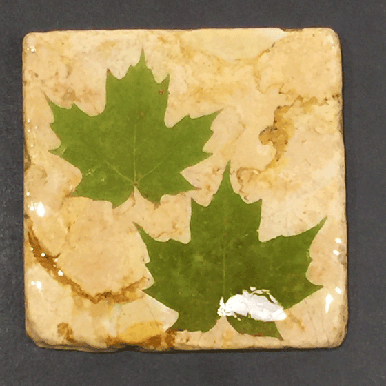 A square yellow piece of marble featuring two green maple leaves.
