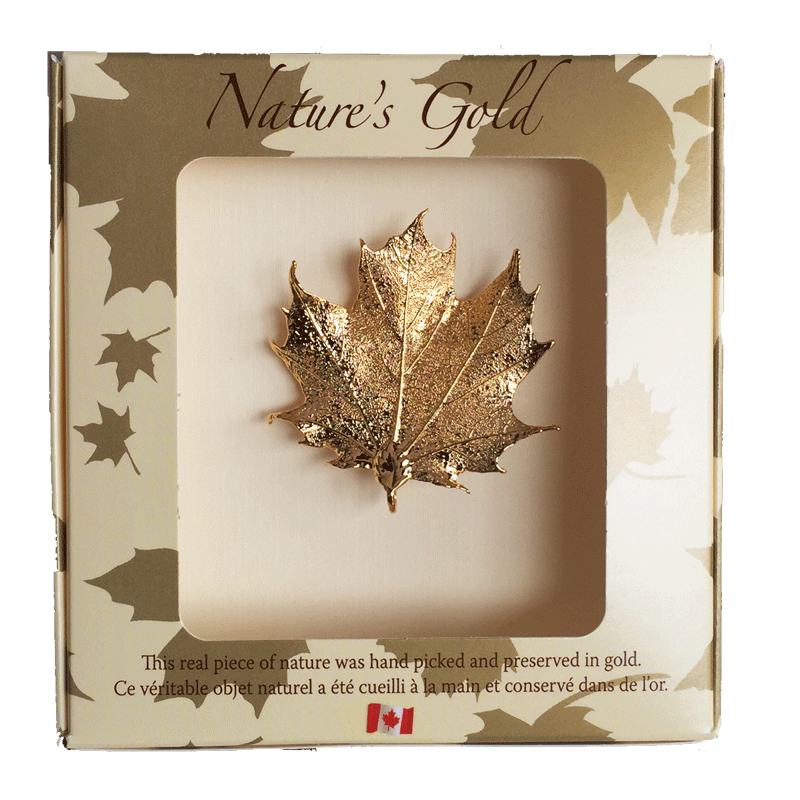 Maple Leaf Brooch - Gold - Jewellery - Made In Canada Gifts