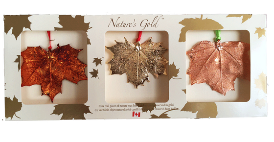 "Three large metal coated maple leaves sit in a paper box. One is coated in gold, one in copper, and one in an iridescent orange and red metal. The top face of the box has three wide square viewing holes. The box is tan with gold maple leaf prints. At the top of the box is written Nature's Gold. At the bottom is written ""this real piece of nature was handpicked and preserved in gold"" followed by ""Ce véritable objet naturel a été cueilli à la main et conservé dans de l'or"""