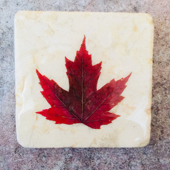 A square white piece of marble featuring a single red maple leaf.