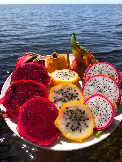 💖 Dragonfruit MIX box FLASH SALE!! 🐲 for the next 24 hours ONLY! ⌛️