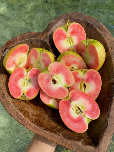 We have an abundance of Hidden Rose Apples available! 🍏