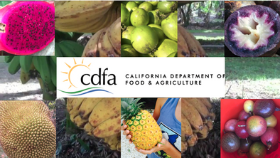 California Department of Agriculture Approved Fruits