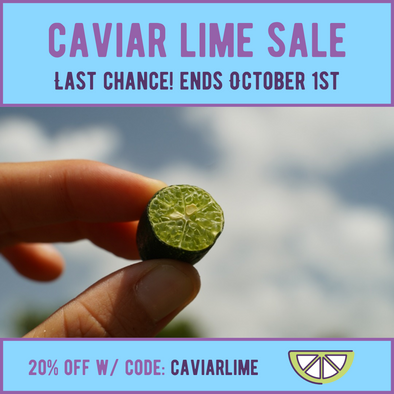 Caviar lime sale is ending ⌛️