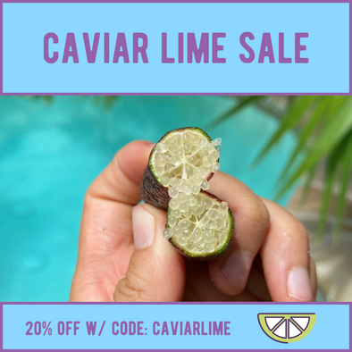 Caviar Lime SALE! 😍
