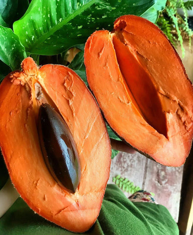 Buttery, creamy, and satisfying mamey 🧡