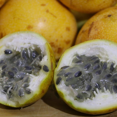 Granadilla Box