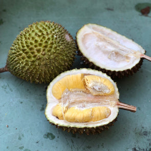 2 Frozen Musang King Durians