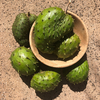 Locally Grown Miami Soursop (Guanabana)