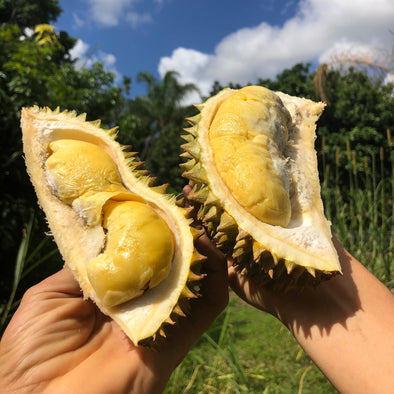 Fresh Chanee Durian