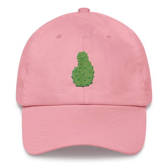 Soursop Dad hat