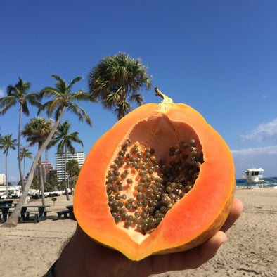Caribbean Papaya Box